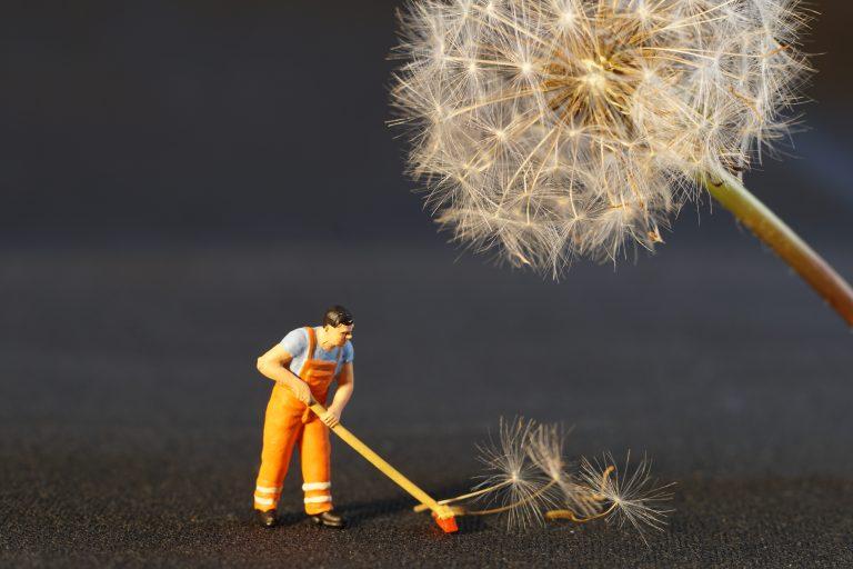 Uno sguardo al mercato del lavoro nell'era dell'informazione